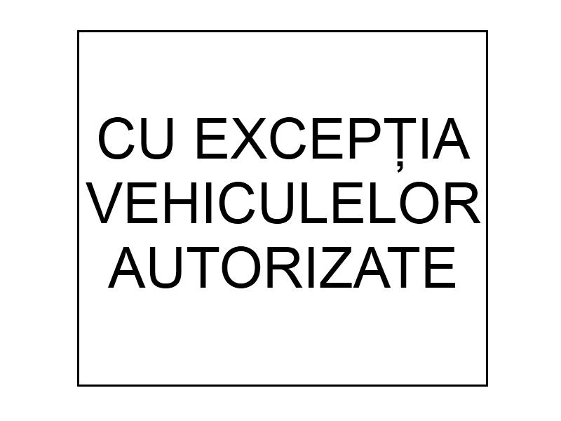 Cu exceptia vehiculelor autorizate